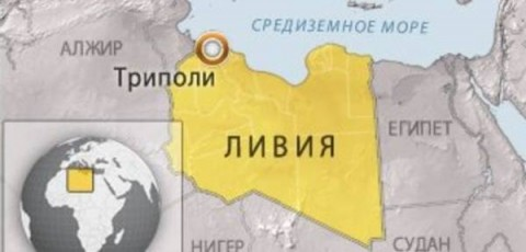 Ливия Типоли