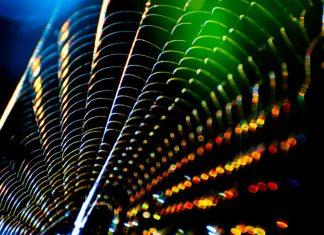 Spiderweb reflecting light