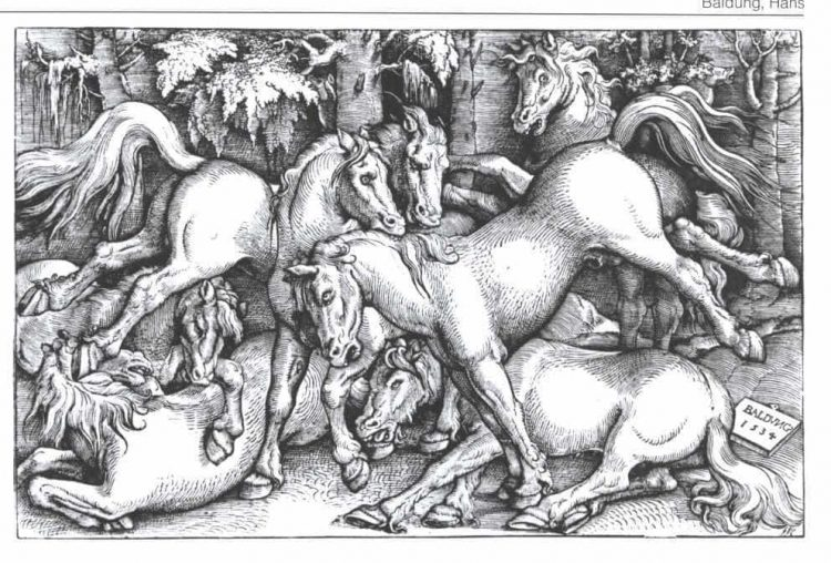 Hans Baldung. Sieben streitende Pferde.