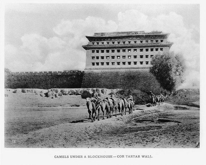 Верблюды над блокгаузом (полевым укреплением с бойницами) - часть тартарской стены