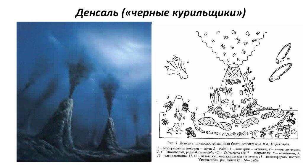Всемирный Потоп. Наука приходит к пониманию Библейских событий! Игорь Дабахов
