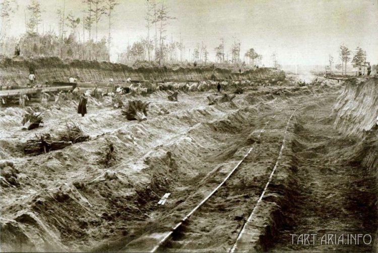 Фото конца девятнадцатого века. Место съёмки и автор не установлены