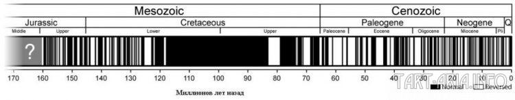 Магнитная шкала