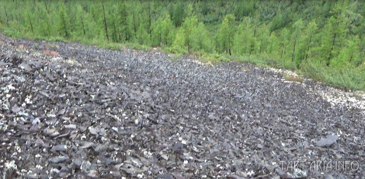 Кадыкчанский вал. Логово белого червя kadykchanskiy