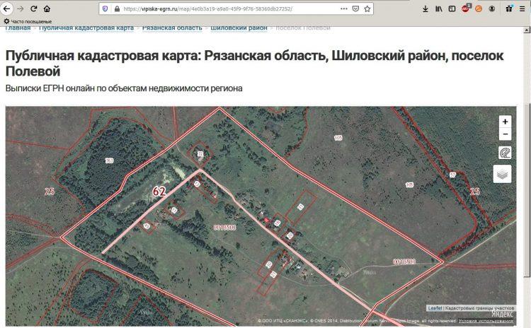 Публичная кадастровая карта по Рязанской области