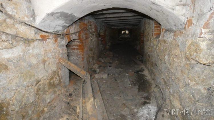 Слой грязи в подвале