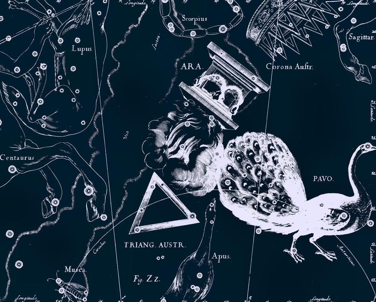 https://spacegid.com/wp-content/uploads/2015/03/ZHertvennik-risunok-YAna-Geveliya-iz-ego-atlasa-sozvezdiy.jpg
