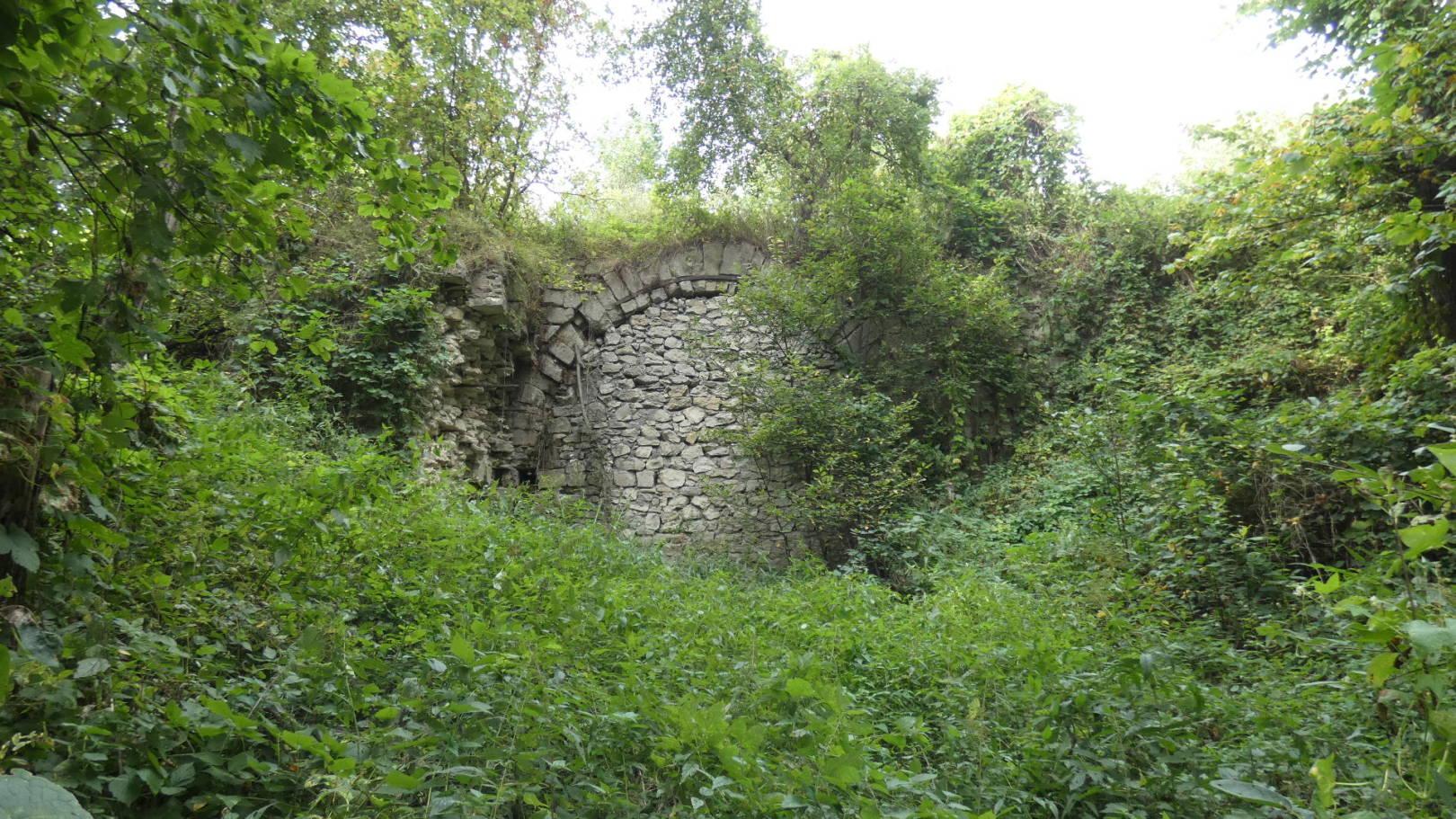 Нашли допотопный мост Нео Фициал
